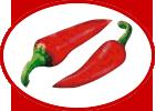 HotChili